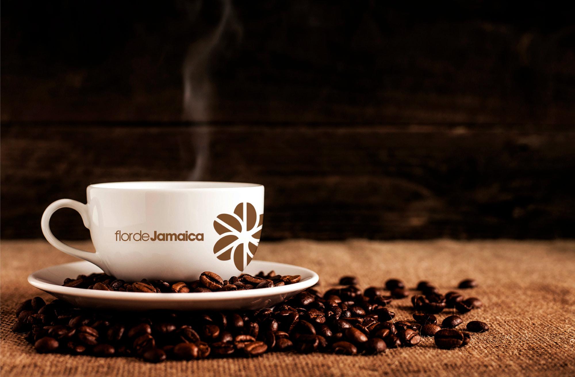 Flor-de-jamaica-branding-03