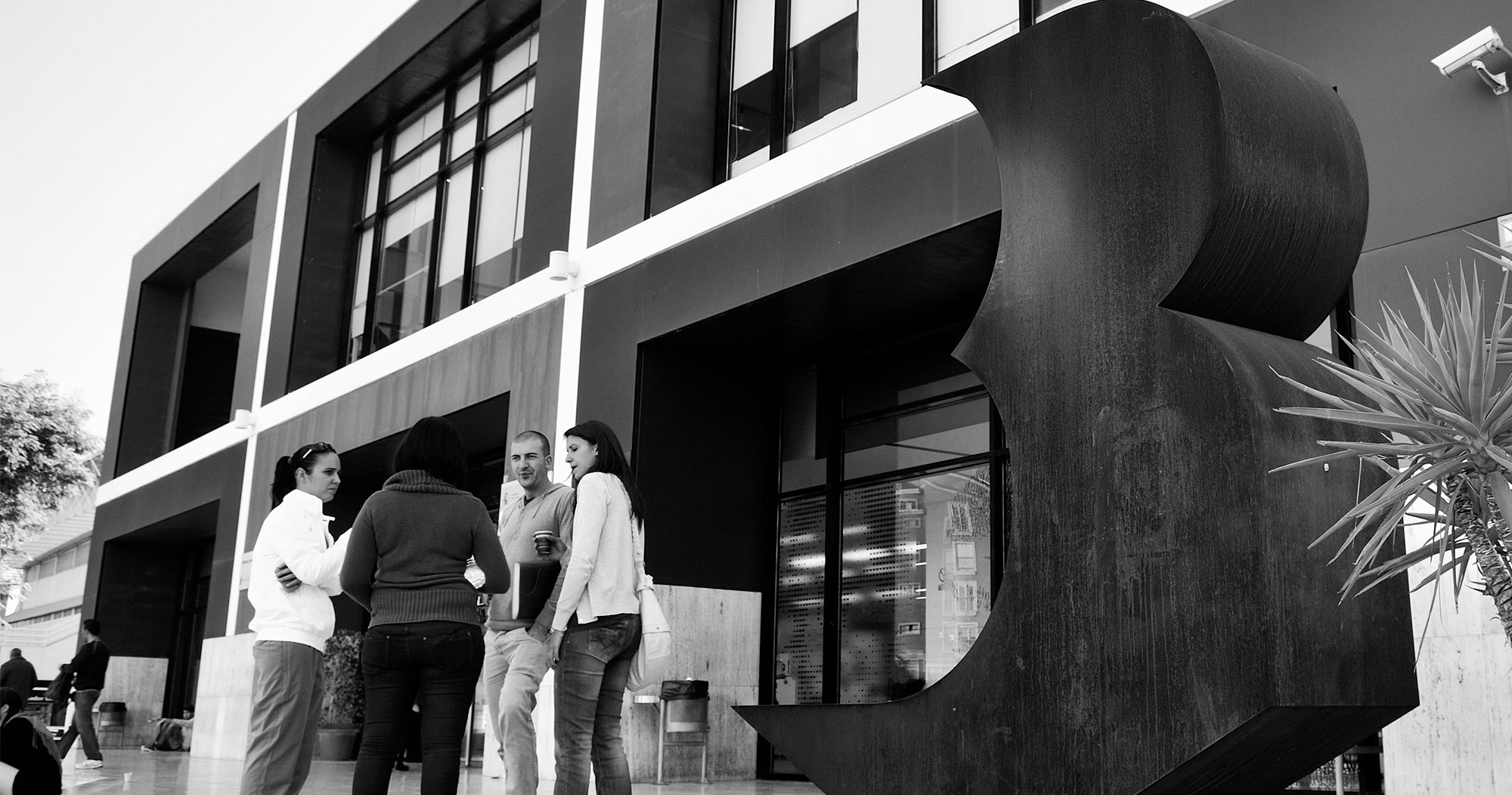 Biblioteca-regional-branding-02