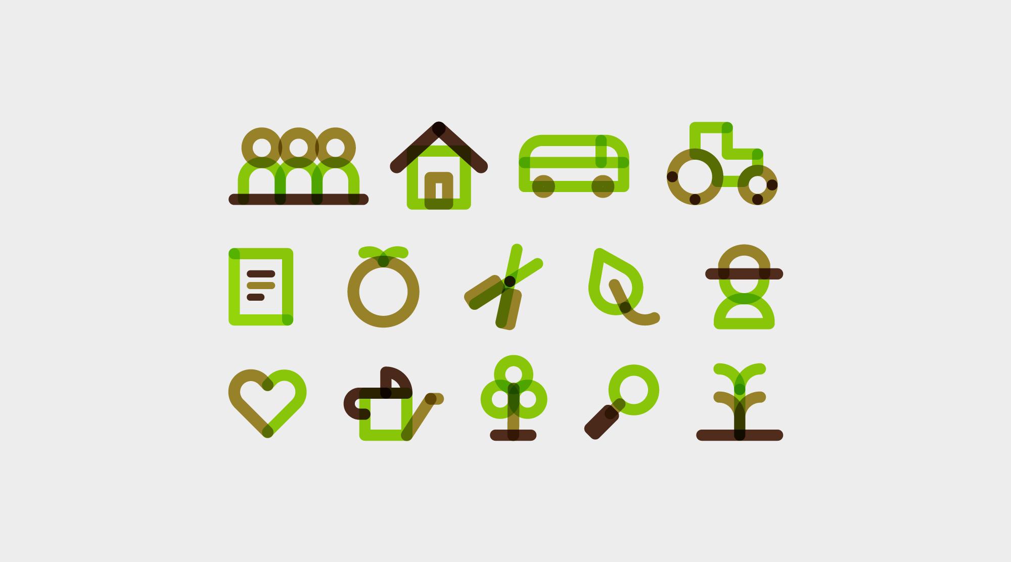 terrafecundis-branding-iconos
