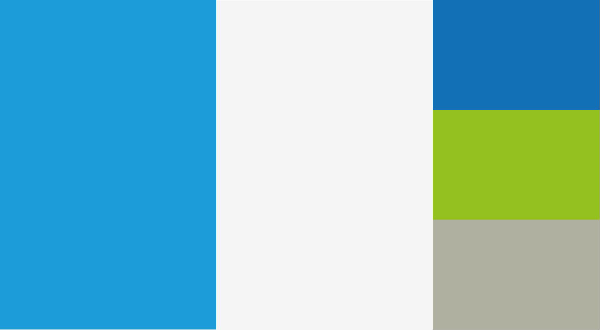 Cardiosalus-branding-colors